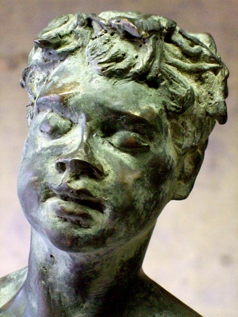 Senzokugakuen Bacco Dionisio